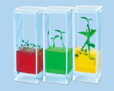 Encourage Fun with Science-10 Tips for Creating a Play Room that is Both Fun and Educational