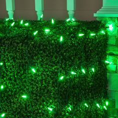 m5 4x6 pure green led net lights green wire