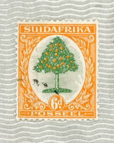 South Africa Orange Tree Vintage Postal Stamp Poster via Etsy Love Art, My Love, Old Stamps, Buy Stuff, Going Postal, First Day Covers, Flower Stamp, Stamp Collecting, Poster Wall