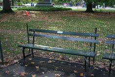 Un banc adopté au coeur de Central Park