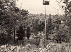 Anne Spencer's Garden in Lynchburg, VA Norton Anthology, American Poetry, Harlem Renaissance, Arts, Virginia, Gardens, Travel, Outdoor, Black