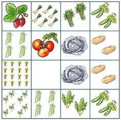 Squarefootgarden - lustiges gärtnern im Quadrat (1)