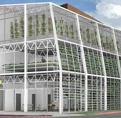 Wyoming Startup Builds Vertical Farm to Employ People With Disabilities Jackson, Wyoming is about to become home to one of the first vertical farms in the world, a three-story greenhouse that will grow produce locally year round and employ people w