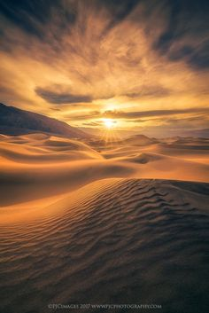 Golden Eye, Death Valley, California by Peter Coskun Nature Photography - Photo 195065801 / 500px