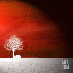 Art.fr - Photographie 'Sensation' par Philippe Sainte-Laudy