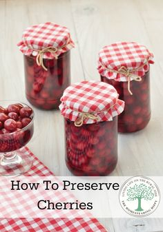 4 delicious ways to preserve cherries for all year long enjoyment! The Homesteading Hippy To Preserve Cherries Canned Cherries, Frozen Cherries, Freezing Cherries, How To Store Cherries, Home Canning, Easy Canning, Canning Tips, Caramel, Pressure Canning