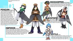 Monster Musume+: Penguin Species by Dragonith on DeviantArt Humanoid Creatures, Weird Creatures, Fantasy Creatures, Mythical Creatures, Nichijou, Monster Boy, Monster Hunter, Monster Museum, Monster Girl Encyclopedia