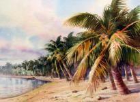 Tom's Beach - Aitutaki