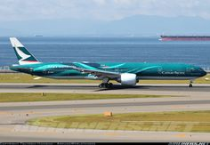 Beautiful bird. Cathay Pacific
