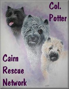 Col Potter Cairn Rescue Network
