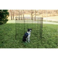 Portable pet fence keeps your dog safe and contained outdoors.