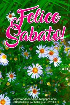 Memorial Day, Calm, Ps4, Anna, Friends, Card Stock, Frases, Alphabet, Amigos