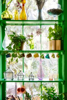 A Garden Window for the Win!