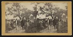 Robin Stanford collection: Group of Negros on their way to the cotton field, St. Helena Island, S.C. Several photos of slave life.