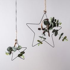 Eucalyptus Hanging Star Christmas Decoration Duo | Ligh