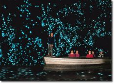 Waitomo Glow Worm Caves, (North Island) New Zealand ~ This is one of the most extraordinary experiences; raft through an underground cavern filled with thousands of glow worms. Mystical, enchanting, not to be missed if you visit New Zealand. Places Around The World, Oh The Places You'll Go, Places To Travel, Travel Destinations, Places To Visit, Travel Tourism, Glowworm Caves New Zealand, Glow Worm Cave, Beautiful World