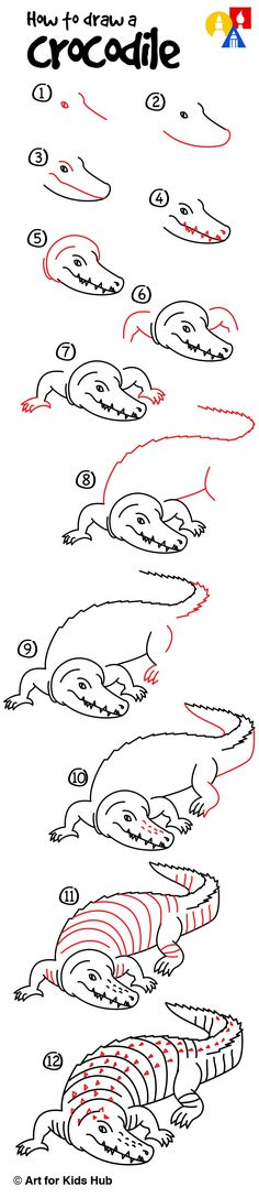 How to draw a realistic crocodile, for kids!
