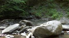 Chautauqua Gorge State Forest