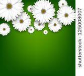 White Daisy Flowers Field...