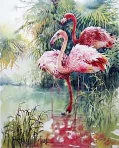 Flamingos - Art of Lian Quan Zhen Watercolor Bird, Watercolor Drawing, Watercolor Artists, Watercolor Animals, Artist Painting, Watercolor Paintings, Watercolors, Flamingo Art, Color Pencil Art