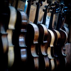 violins . . .