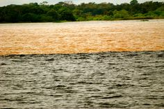 Rio Negro (dark) meets Rio Solimoes (pale). They flow together thus for miles, before the waters merge.Incredible.