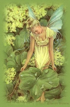 Crystalex Graphic Designs~James Browne~The Dew Fairy - Tattoo idea