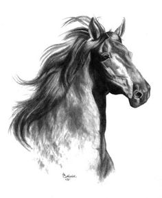 The #Horse Sketch ~ http://www.gensart.net ~ Hand Drawn #Pet Portraits by artist…