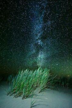 Benché l'onda delle parole  ci sovrasti sempre,  le nostre profondità interiori  sono sempre silenziose.   Kahlil Gibran