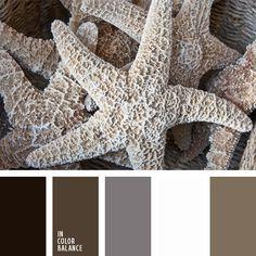 blanco y marrón, color estrella de mar, combinación de colores marrón y gris, gris y blanco, marrón, marrón claro, marrón grisáceo, paleta de colores monocromática, paleta del color marrón monocromática, selección de colores, sepia, tonos marrones.