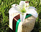 Tiger Lily - Palm Leaf Favor Box