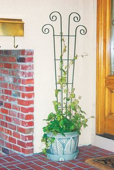 Panacea Products Planter Steel Fan Trellis Use your vertical space to grow beautiful flowers! Cheap Pergola, Outdoor Pergola, Backyard Pergola, Pergola Kits, Pergola Ideas, Pergola Plans, Balcony Ideas, Patio Roof, Vintage Garden Decor