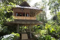 3RD STOP: Here's our cabina for 3 nights/4 days, all inclusive, Copa De Arbol, Osa Peninsula, Drake Bay, Costa Rica