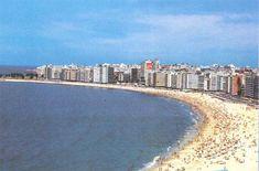 Playa De Los Pocitos