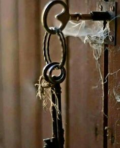 Spider web upon the bunch of keys left hanging makes it creepy...