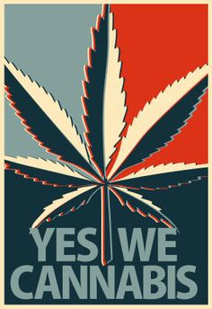 ArtEdge Yes We Cannabis Marijuana Poster Print, x Marijuana Art, Medical Cannabis, Cannabis Oil, Cannabis Edibles, Stoner Art, Weed Art, Puff And Pass, Painting Art, Weed