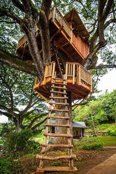 Baumhaus Holz Leiter Äste #garden #house #kids