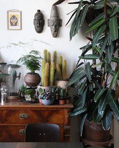 #jungleanimals + African masks + #plantgang =  :@designapartmentsweimar #urbanjunglebloggers