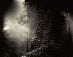 1996 Southern Landscapes Sally Mann