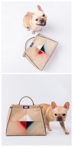 Bag by Fendi. #barkdorfs in collaboration with PurseBlog. Photo by Vlad Dusil