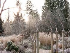 Wat een eenvoudige pergola in de winter kan doen. Mooi !!