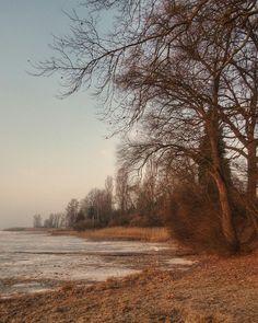 Natural Reserve in Höri Peninsula. Can you see that the shore is frozen? I hope we will enjoy others such sunny days...  .  .  #bodenseepage  #erlebnisnatur #meinuntersee #bodenseepic  #sunrise #dawn  #planetfulloflife  #naruralreserve #mire #moor #nature #nature_lovers #landscape #landscape_lovers #sunnyday #ReservaNatural #pantano #Naturschutzgebiet #moor #BadenWürttemberg #Höri #Germany #Alemania #Deutschland  #kodakpixpro #kodak_photo #AZ362