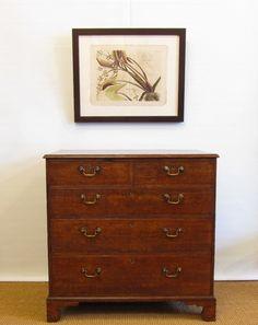 Allpress Antiques Furniture Melbourne Victoria Australia: Furniture - English - Chests