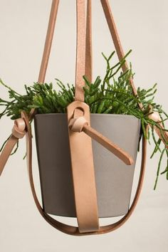 """Made strong with thick vegetable-tanned leather straps, this hanging plant holder can hold almost any size pot. Strap drop: 21"""" About Open Habit: Owned and run"""