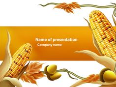 Corn thanksgiving free powerpoint template free powerpoint harvest of autumn presentation template toneelgroepblik Choice Image