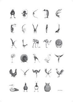 Fågelalfabet
