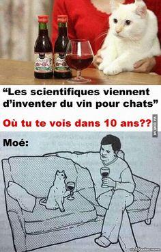 Vin pour Chat