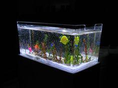 This miniature aquarium is incredibly pretty..I've read the tutorial and I believe I could prob do it...and I am a total amateur !..take a look !