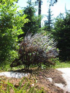 Porcupine by Wendy Klemperer, Coastal Maine Botanical Gardens