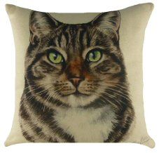 Tabby Cat Waggy Dogz cushion with designs by Christine Varley, UK pet portrait artist. Ideal gifts for those who love Tabby in the UK & EU. Evans, Cat Merchandise, Cat Cushion, Printed Cushions, Decorative Pillow Covers, Cat Gifts, Pet Portraits, Dog Cat, Kitten